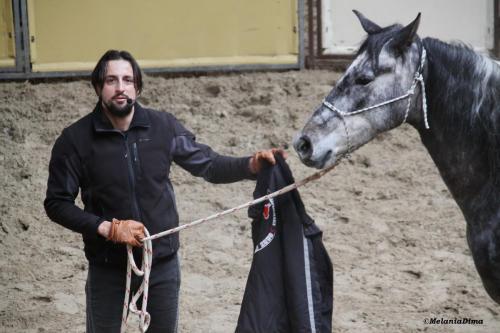 Deburajul cailor cu Denis Stefan 00101 (10)