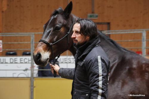 Deburajul cailor cu Denis Stefan 00102 (16)