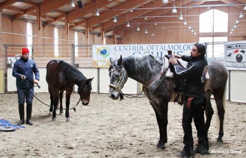 Deburajul cailor cu Denis Stefan 00102 (2)